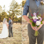 Ashley and Tyler: Flagstaff Intimate Wedding