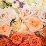 Hannah and Ruben – Flagstaff Wedding Photography Violas Flower Garden