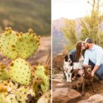 Flagstaff Couple Photography – Katie and Mark