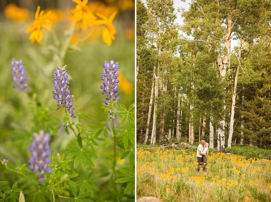 Flagstaff Arizona Portrait Wildflower Photography -Miranda and Quinton 4