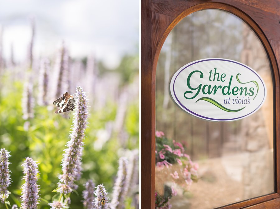 Tiffany and Caleb: Flagstaff Wedding Photographer Violas Flower Garden