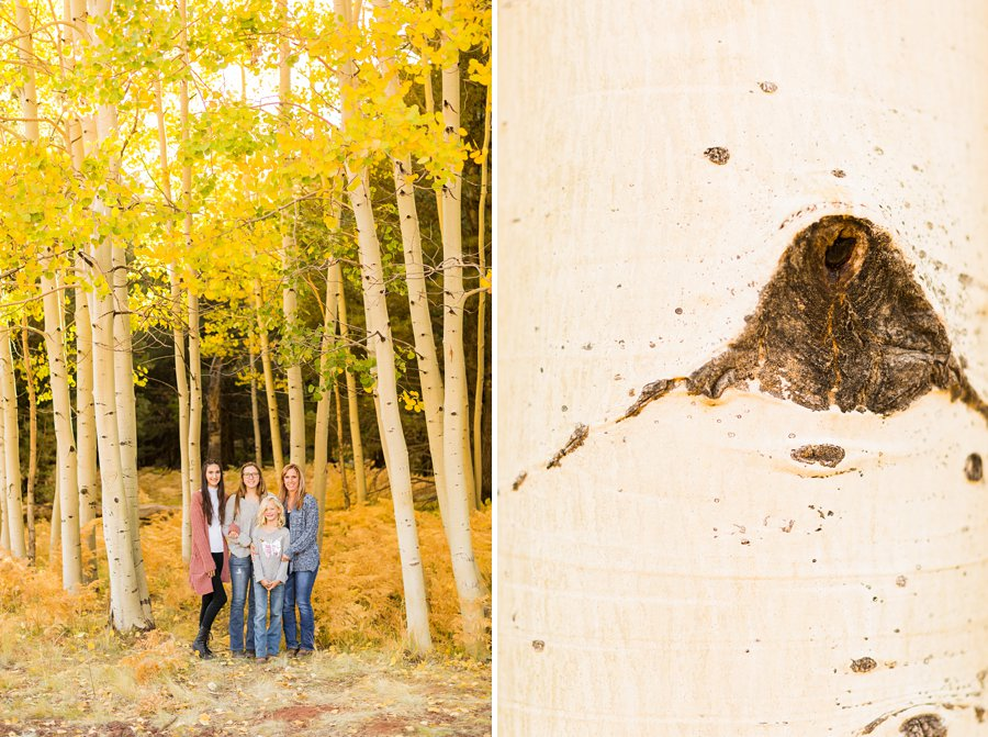 Mewhirter Family - Autumn Aspen Family Photography Flagstaff 2