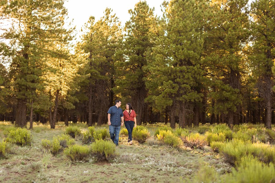 Sahara and Mike - Flagstaff Arizona Sunflower Engagement Photography 2