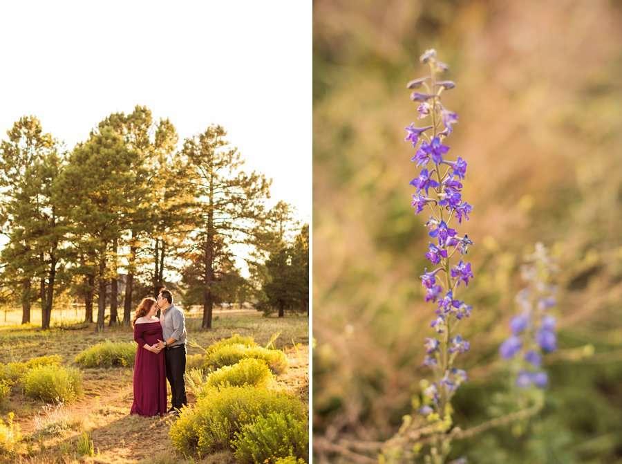 To Family - Northern Arizona Maternity and Family Photographer 3