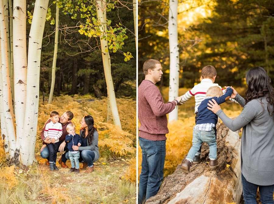 Wilson Family - Autumn Aspen Family Photographers Flagstaff 3