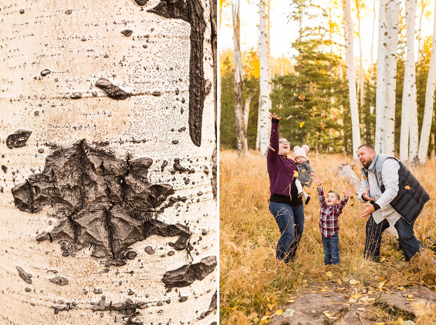 Williams Family: Northern Arizona Family Photography 01