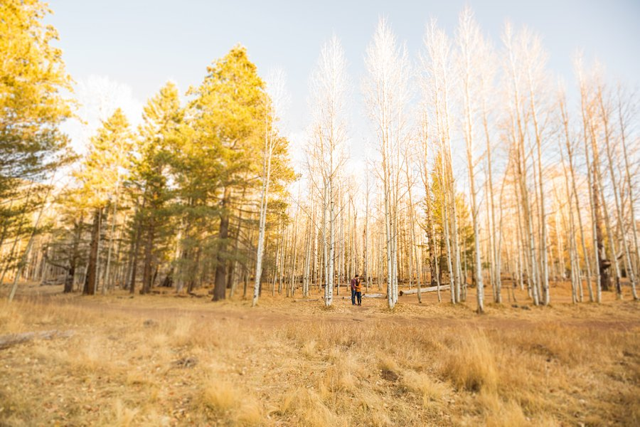 Lexi and Justin: Flagstaff AZ Engagement Photographers 03