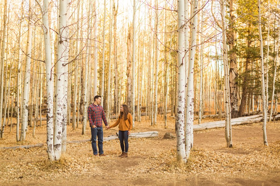 Lexi and Justin: Flagstaff AZ Engagement Photographers 04