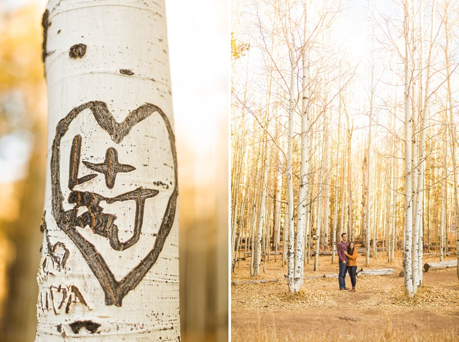 Lexi and Justin: Couples Photography Northern Arizona 04532