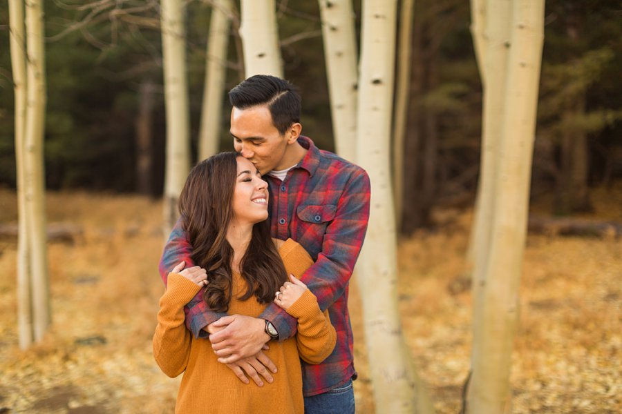 Lexi and Justin: Flagstaff AZ Engagement Photographers 0
