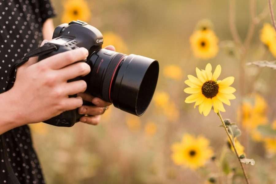 Saaty Photography: Company Background - Sedona Arizona Portrait Photographers -53