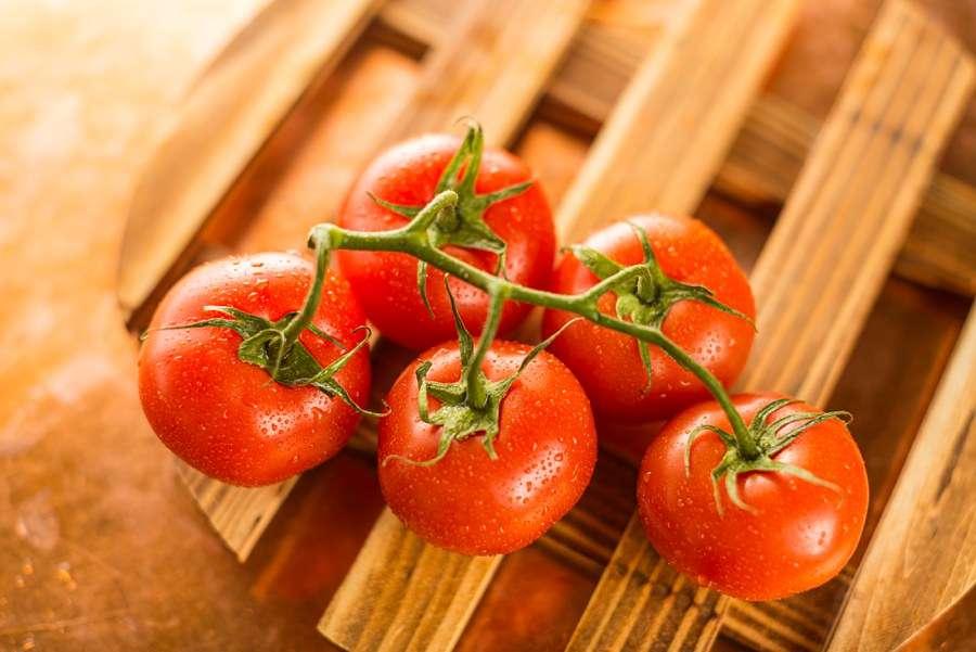 Tomatoes Sedona Arizona Restaurant Photographer