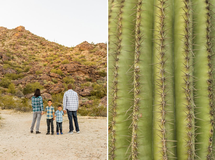 AZ Portrait Family Photography