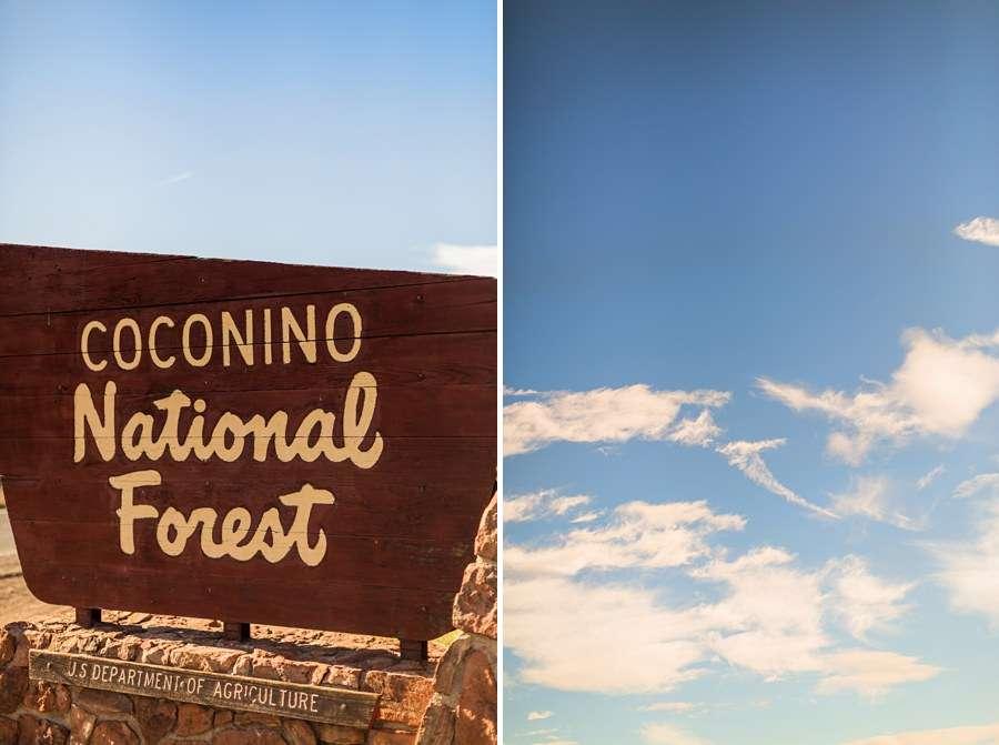 Sedona AZ Portrait Photographers Coconino National Forest Sky