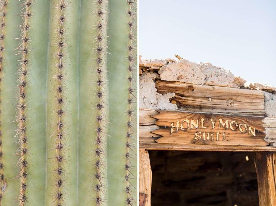Jessie and Aaron: Stardance Tucson Wedding cacti