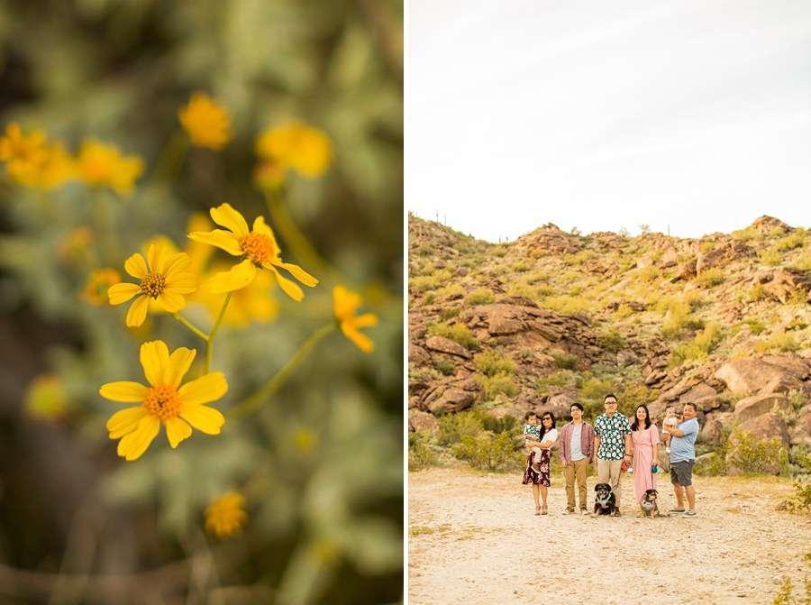 The Martin Family: Tempe Arizona Family Photographers snuggles