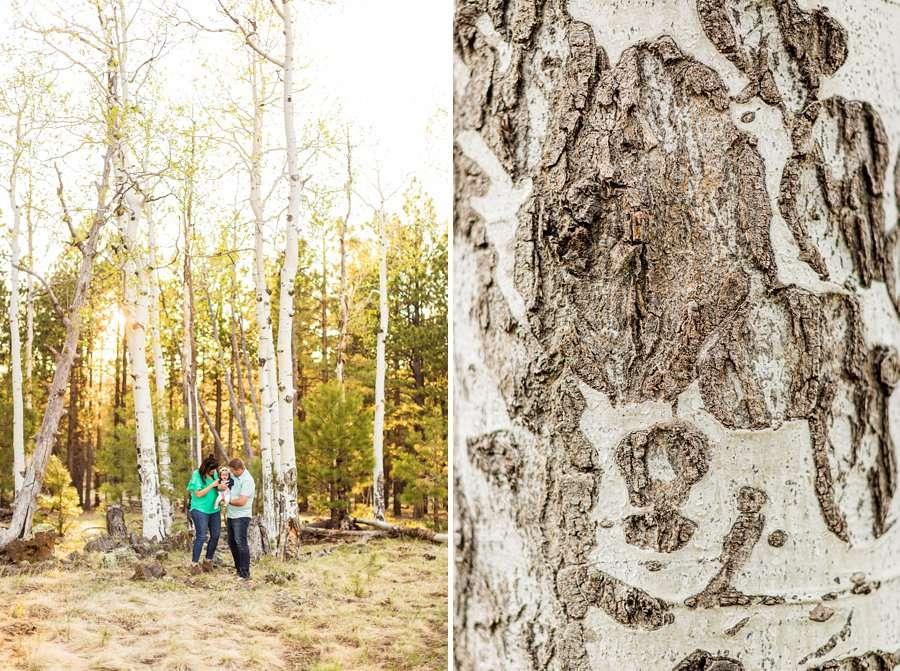 Bowman Family: Northern Arizona Families Photography aspens nature