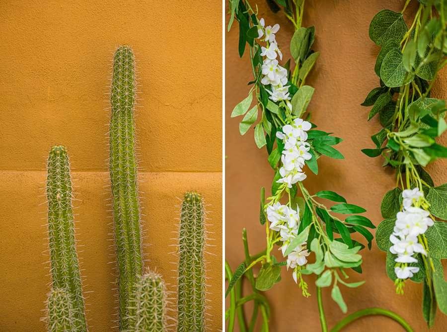 Liz and Jeremy: Arizona Elopement Photographers cactus details