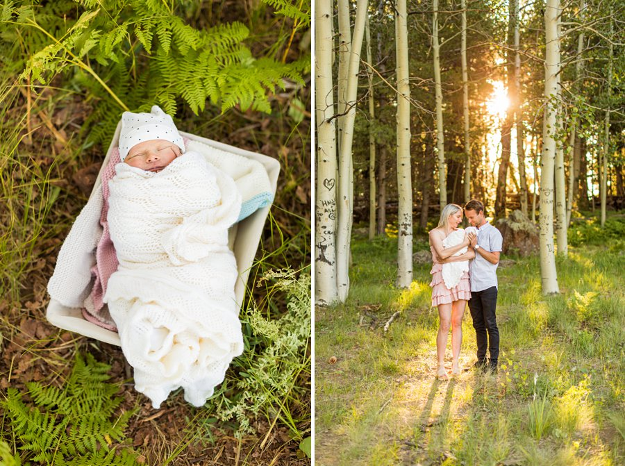 Roughan Family: Mini Session Flagstaff Photography Sessions aspen on location newborn infant