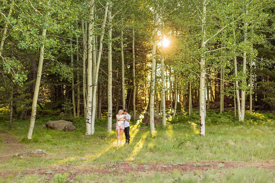 Roughan Family: Mini Session Flagstaff Photography Sessions newborn infant photographer