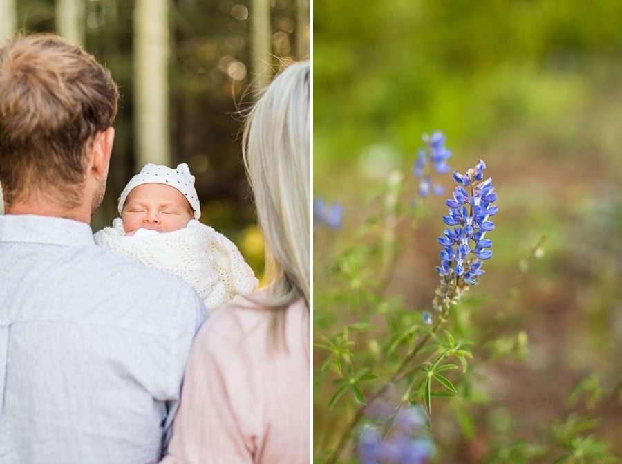 Roughan Family: Newborn Photographers Northern Arizona newborn az