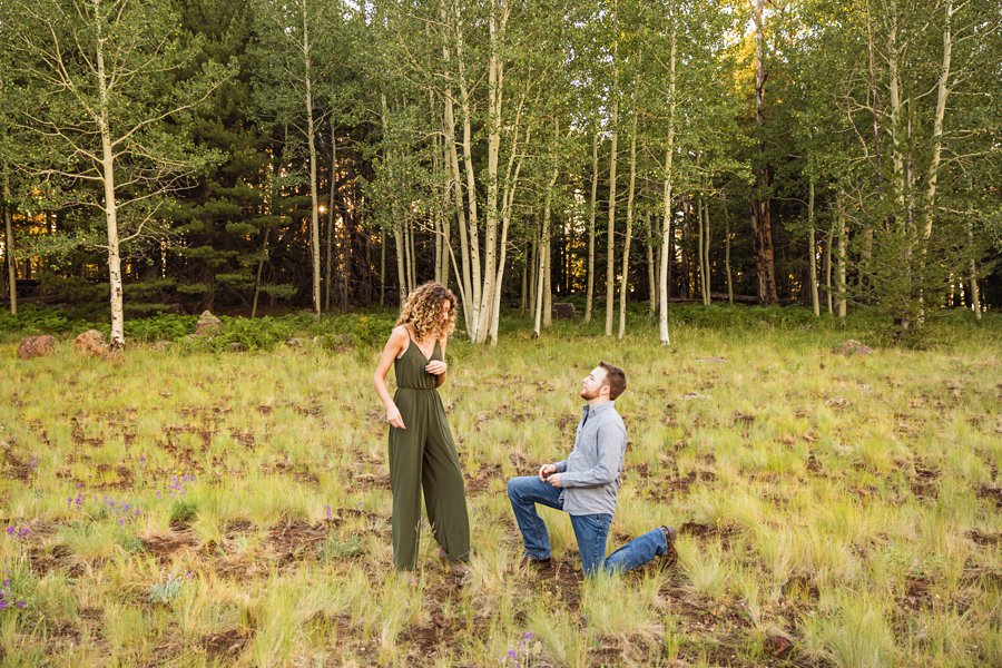 Ryan and Cierra: Flagstaff Arizona Proposal Photographer surprise proposal
