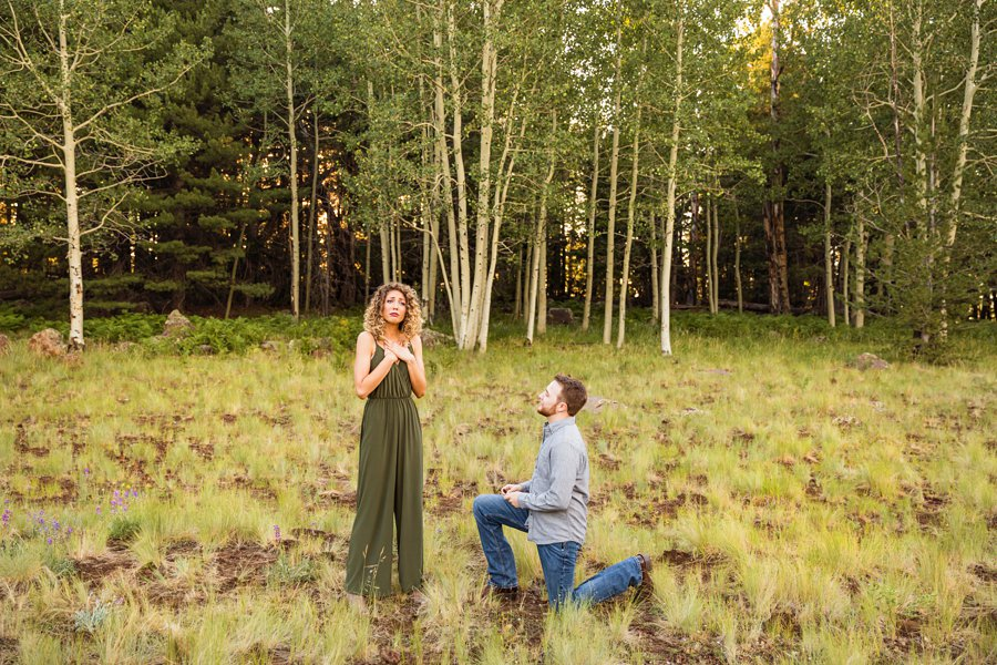 Ryan and Cierra: Flagstaff Arizona Proposal Photographer how to plan a proposal