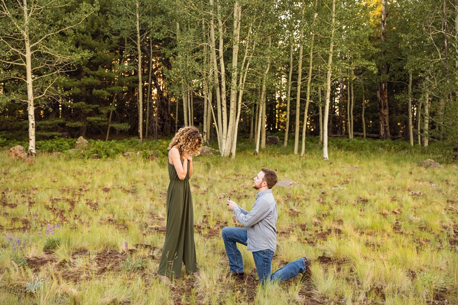 Ryan and Cierra: Flagstaff Arizona Proposal Photographer how to plan the perfect proposal