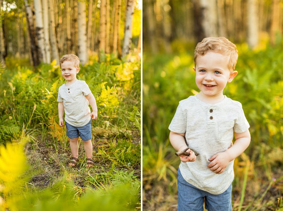 Anderson Family: Flagstaff Arizona Family Pictures toddler portraits