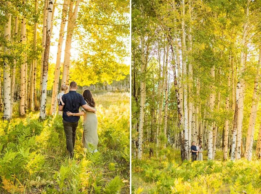 Anderson Family: Northern AZ Portrait Photography Aspens groves ferns