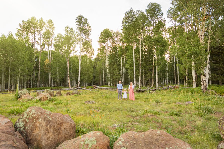 The Flood Family: Flagstaff Aspen Trees Photography summer locations