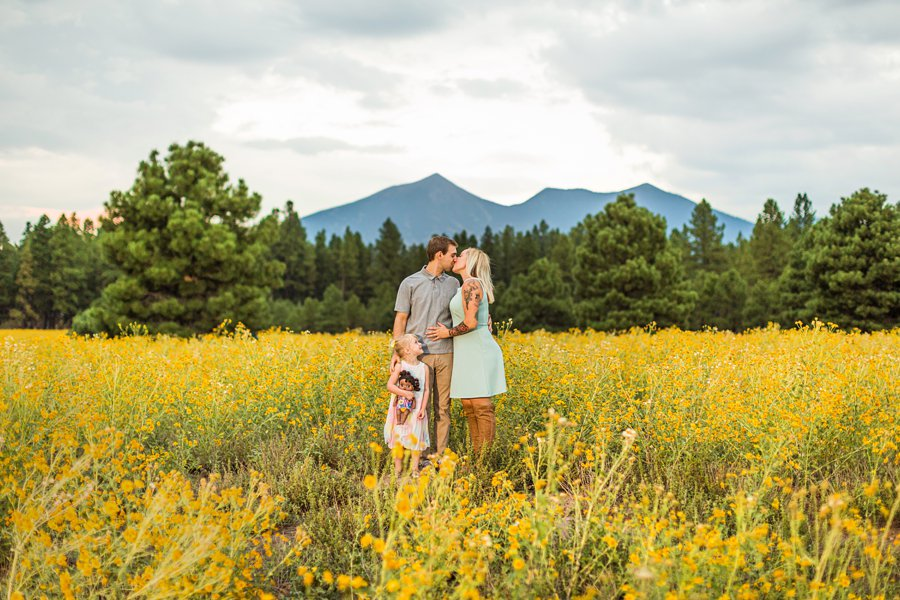 The Flood Family: Flagstaff Aspen Trees Photography mountain and flowers