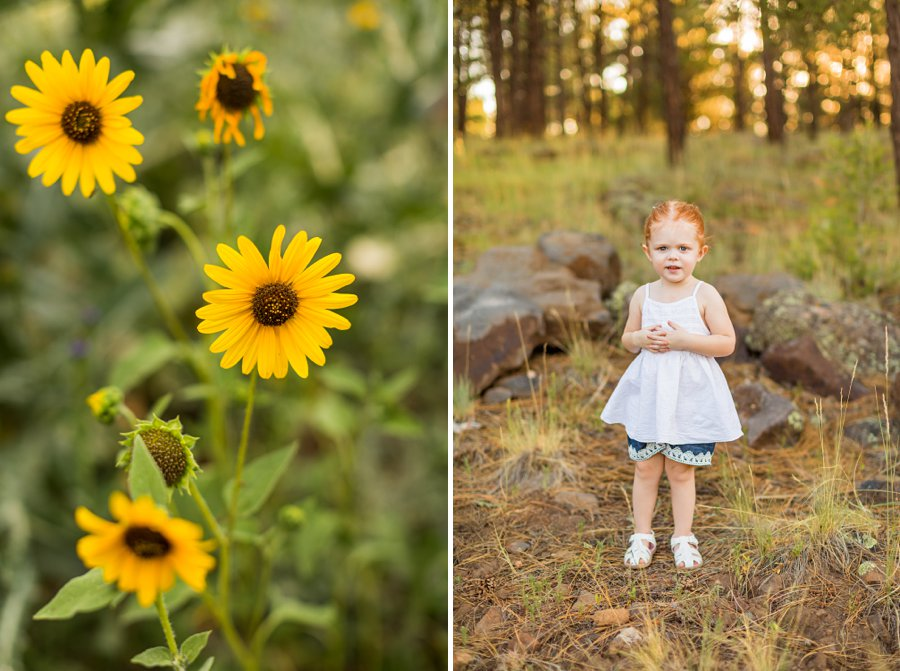 Johnstone Family: Sunflower Arizona Portrait Photographer family and children photography