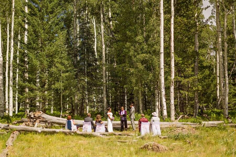 Jeanne-Marie and Rami: Arizona Mountains Wedding the setting Aspen Corner Flagstaff Elopement
