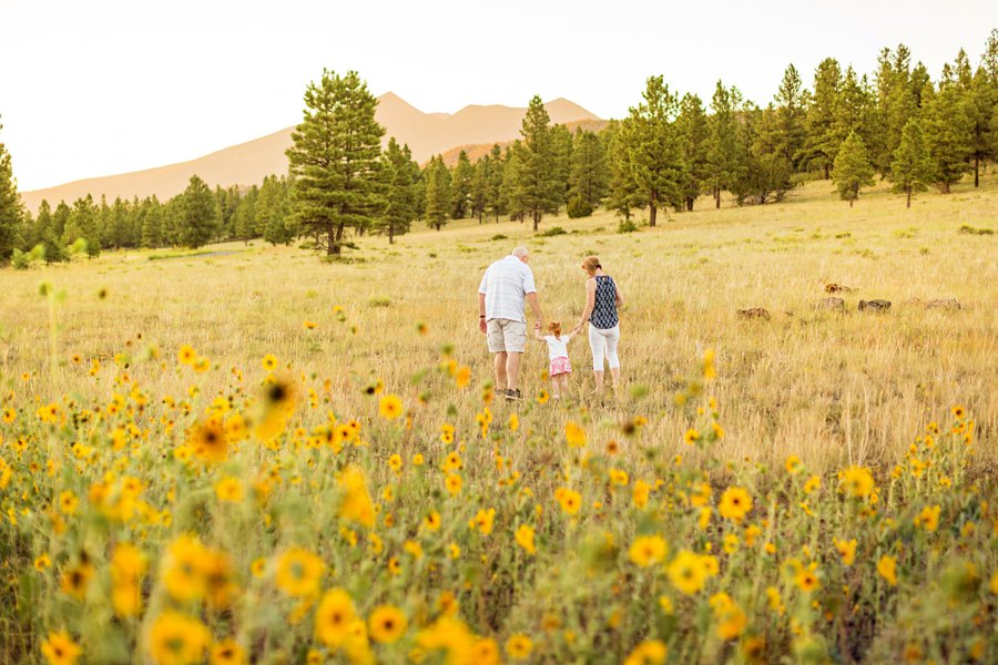 Johnstone Family: Flagstaff AZ Wildflower Session best places to watch sunset