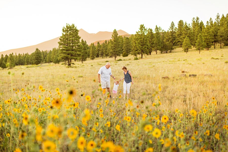 Johnstone Family: Sunflower Arizona Portrait Photographer family walking in a meadow