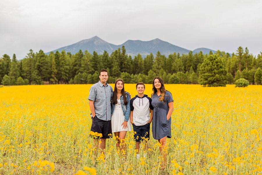 Sunflower Family Photographer Flagstaff: Vesely Family's Mini Session fields of sunflowers