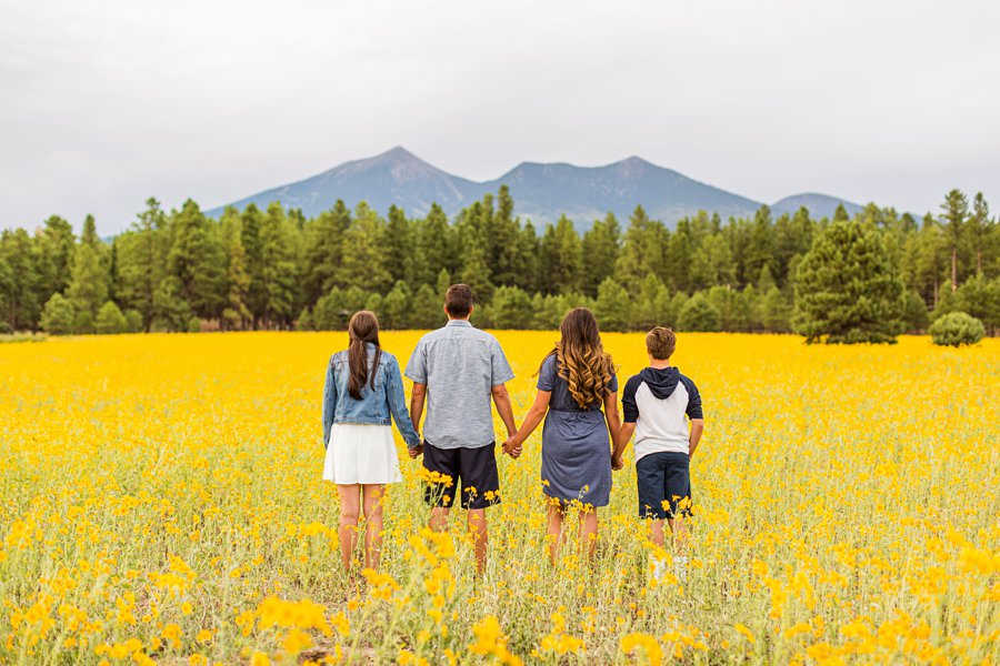 Sunflower Family Photographer Flagstaff: Vesely Family's Mini Session looking at the mountain