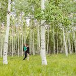 Taylor and Kevin: Lockett Meadow Engagement Session