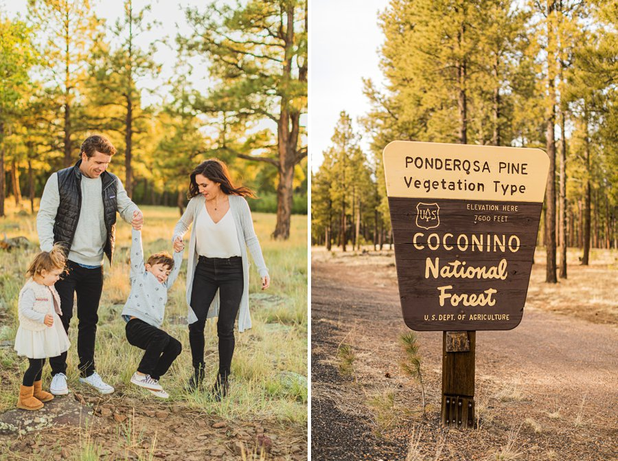 Jacobsen Family: Flagstaff Mini Session Photographers family time together