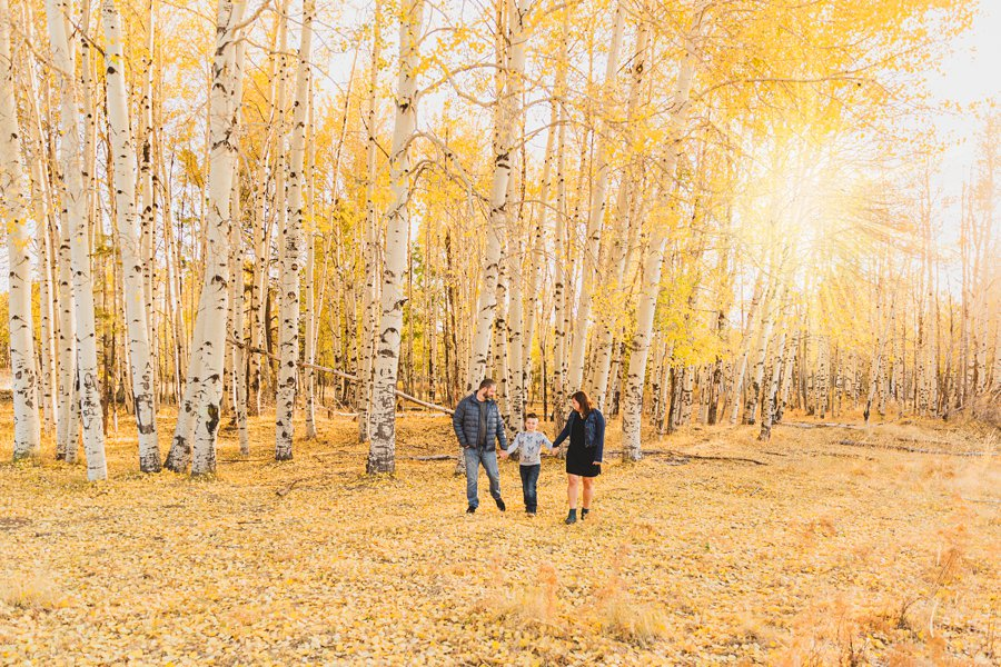 Hauser Family: Flagstaff Aspen Portrait Photographers walking in the aspens