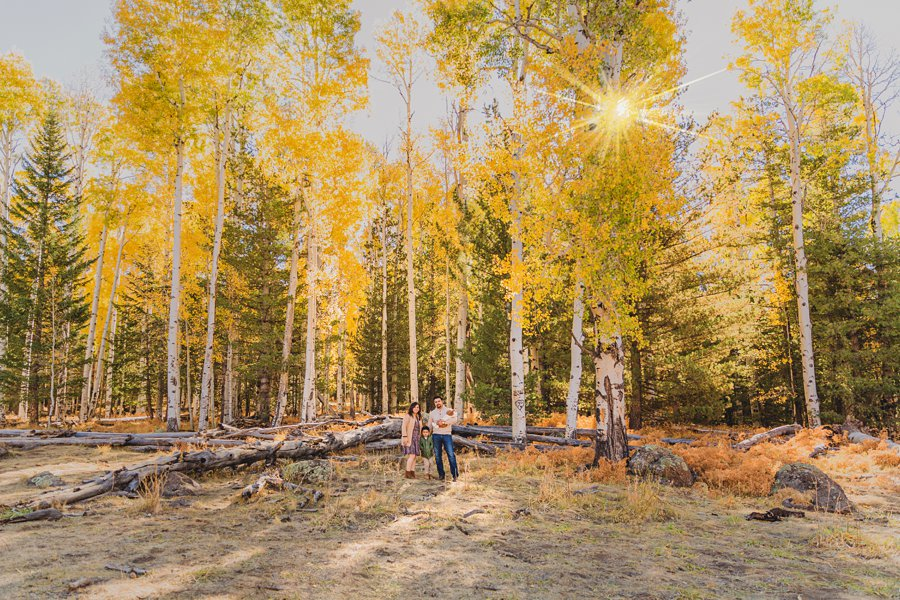 Khaznadar Family: AZ Family Photographer Sessions landscape aspen trees