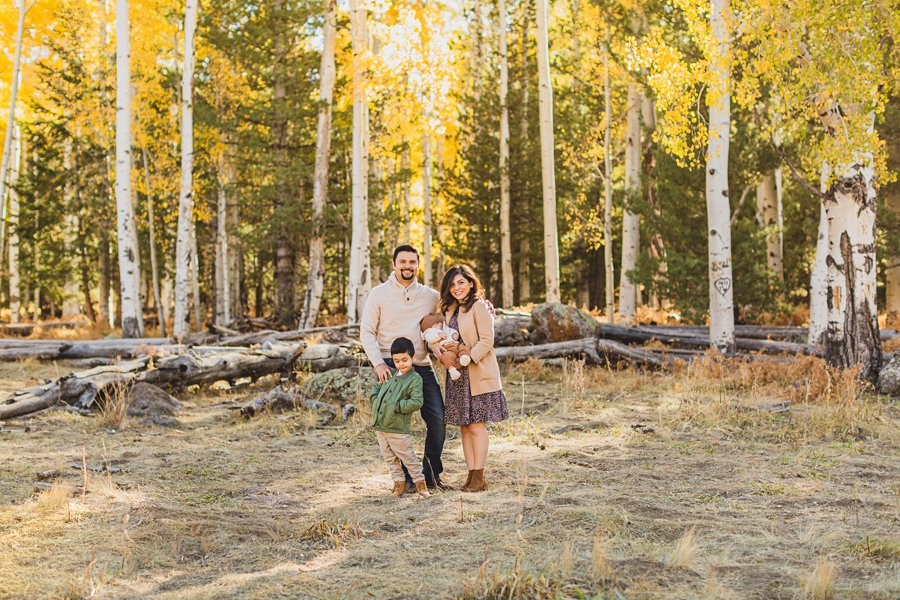 Khaznadar Family: AZ Family Photographer Sessions autumn aspen trees