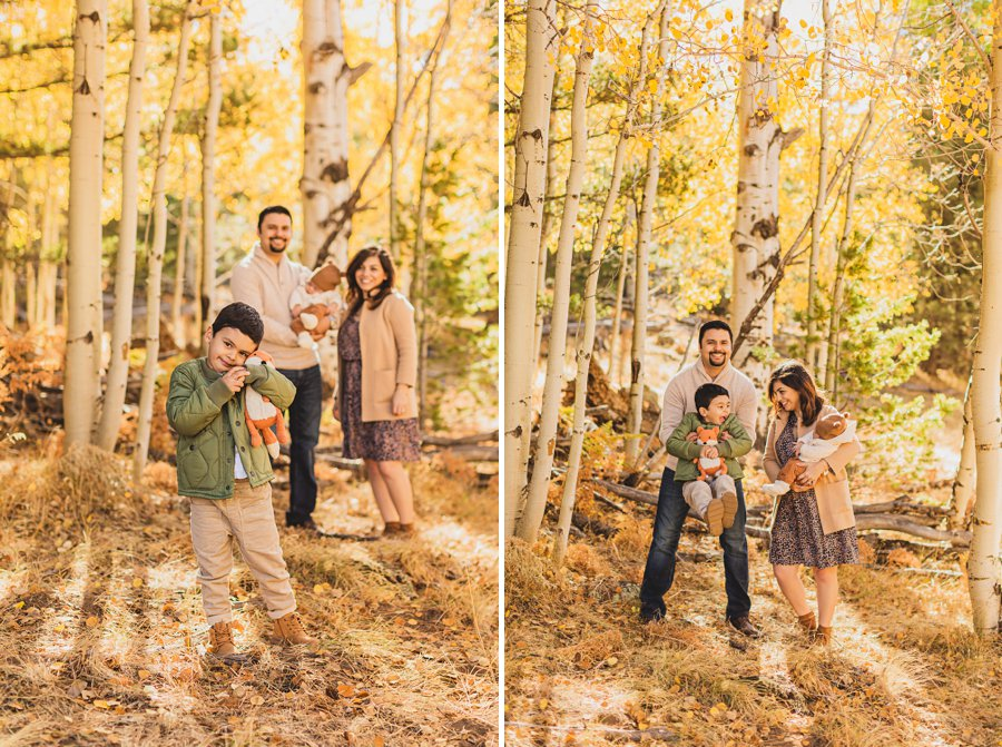 Khaznadar Family: Aspen Corner Portrait Photographer family together