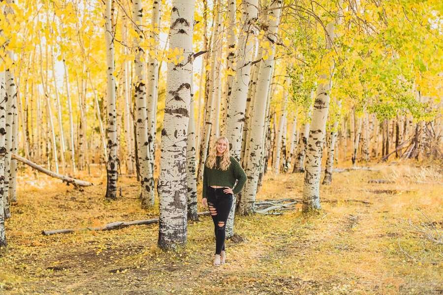 Layne and Sophie: Northern Arizona Fall Photography aspens