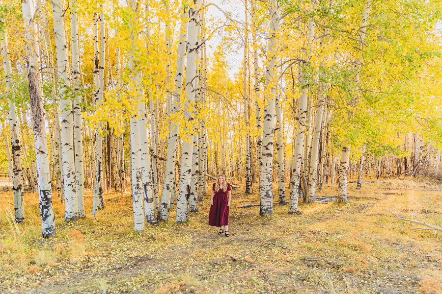 Layne and Sophie: Northern Arizona Fall Photography in the trees