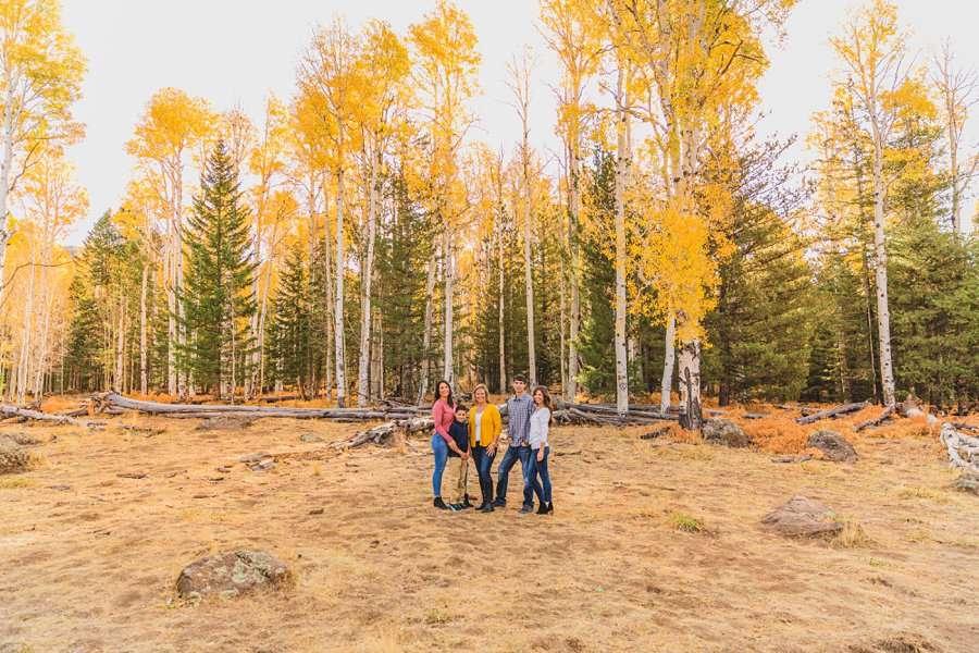 Barrett Family: Aspens Flagstaff Portrait Photographers amazing locations