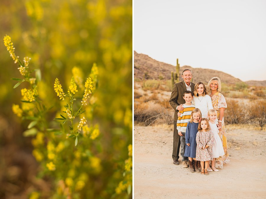Martin Family: Phoenix Portrait Photography extended family sessions