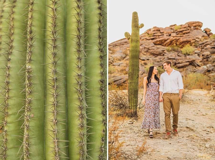 Martin Family: Phoenix Portrait Photography cacti details