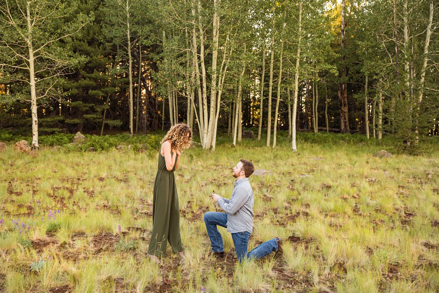 How to Plan the Perfect Flagstaff Proposal